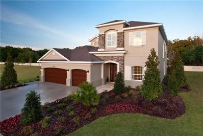 3335 Anna George Drive, Valrico, FL 33596 - MLS#: T2864411