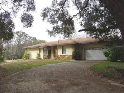10501 E Turtle Lane, Floral City, FL 34436 - #: T2866771