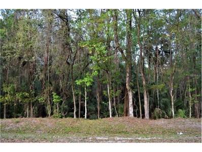 Swallow Drive, Land O Lakes, FL 34639 - MLS#: T2868165