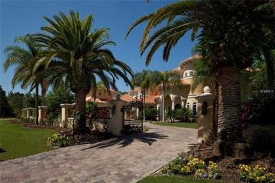 16218 Sierra De Avila, Tampa, FL 33613 - #: T2871152
