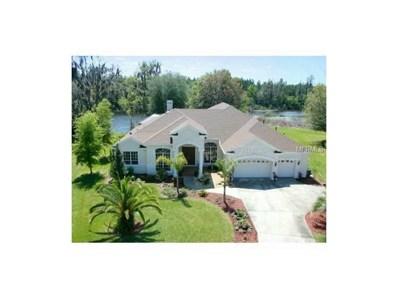 1113 Oxbridge Drive, Lutz, FL 33549 - MLS#: T2872650