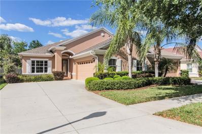 20725 Amanda Oak Court, Land O Lakes, FL 34638 - MLS#: T2875344