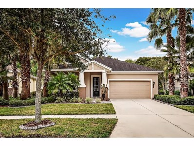 20062 Heritage Point Drive, Tampa, FL 33647 - MLS#: T2875969