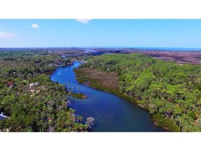 8149 River Point Drive, Weeki Wachee, FL 34607 - MLS#: T2879057