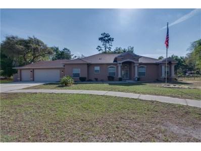 13424 Shumaker Court, Spring Hill, FL 34609 - MLS#: T2879214