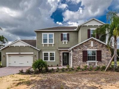 17816 Daisy Farm Drive, Lutz, FL 33559 - MLS#: T2879838