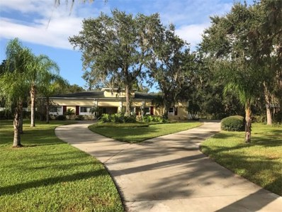 13720 Sweat Loop Road, Wimauma, FL 33598 - MLS#: T2881570