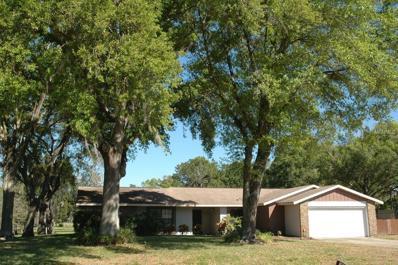17309 Lynndan Drive, Lutz, FL 33548 - MLS#: T2881796
