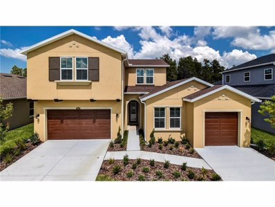 1696 Hidden Springs Drive, Trinity, FL 34655 - MLS#: T2882058