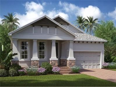 12357 Fitzroy Street, Odessa, FL 33556 - MLS#: T2882084