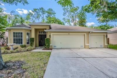 3723 Hollow Wood Drive, Valrico, FL 33596 - MLS#: T2882737