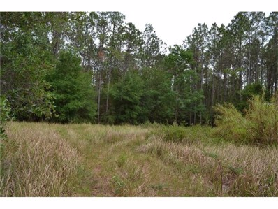 Reed, Dade City, FL 33523 - MLS#: T2883032