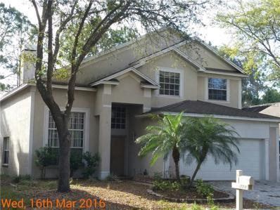 17714 Long Ridge Road, Tampa, FL 33647 - MLS#: T2884257