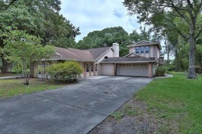 706 Chancellar Drive, Lutz, FL 33548 - MLS#: T2884305