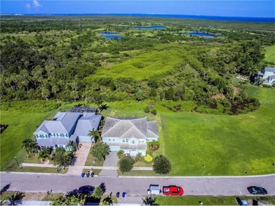 720 Manns Harbor Drive, Apollo Beach, FL 33572 - MLS#: T2885019