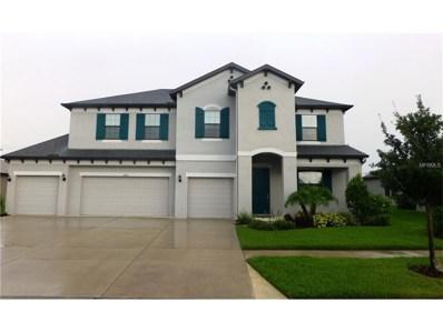 2903 Shetland Ridge Drive, Valrico, FL 33596 - MLS#: T2887008
