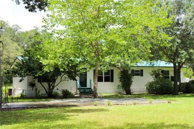11823 Emmaus Cemetery Road, San Antonio, FL 33576 - MLS#: T2887647