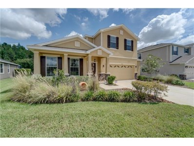 27645 Stonecreek Way, Wesley Chapel, FL 33544 - MLS#: T2889683
