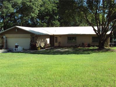 3702 Joe Sanchez Road, Plant City, FL 33565 - MLS#: T2891284
