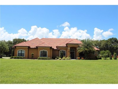 2607 Jim Johnson Road, Plant City, FL 33566 - MLS#: T2891317