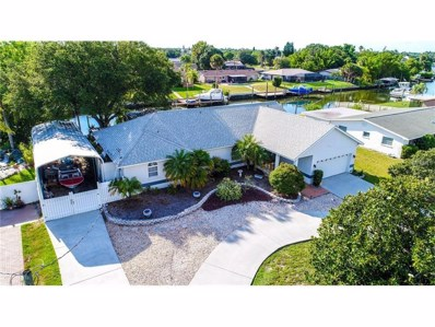 6316 Flamingo Drive, Apollo Beach, FL 33572 - MLS#: T2891456