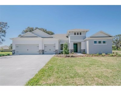 1090 Buckhurst Drive, Spring Hill, FL 34609 - MLS#: T2891713