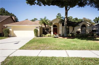 3836 Cold Creek Drive, Valrico, FL 33596 - MLS#: T2891742