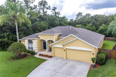 10612 Chambers Drive, Tampa, FL 33626 - MLS#: T2891968