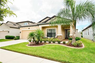 11517 Scarlet Ibis Place, Riverview, FL 33569 - MLS#: T2893567