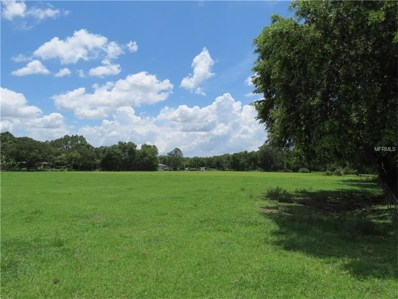 1711 S Forbes Road, Plant City, FL 33566 - MLS#: T2893918