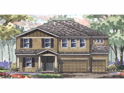 22011 Butterfly Kiss Drive, Land O Lakes, FL 34637 - MLS#: T2894806