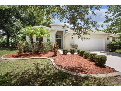 8217 Moccasin Trail Drive, Riverview, FL 33578 - MLS#: T2895493