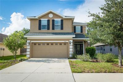 18501 Dajana Avenue, Land O Lakes, FL 34638 - MLS#: T2895569