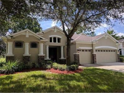 1011 Facet View Way, Valrico, FL 33594 - MLS#: T2897274