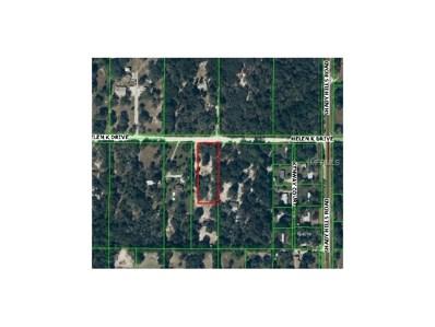 Helen K Drive W, Brooksville, FL 34610 - MLS#: T2897934