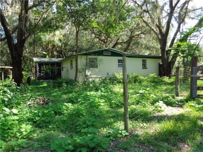 3633 Panther Path Road, Lutz, FL 33559 - #: T2898697