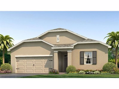 10611 Park Meadowbrooke Drive, Riverview, FL 33578 - MLS#: T2899163