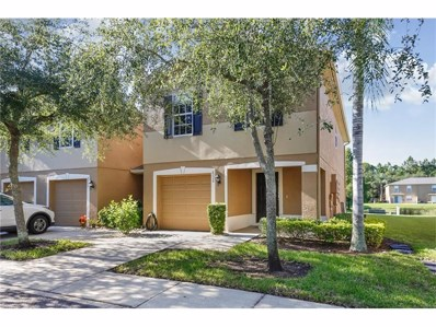 8008 Sutton Terrace Lane, Tampa, FL 33615 - MLS#: T2899478