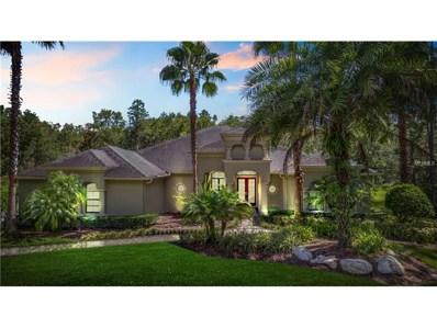 416 Pine Bluff Drive, Lutz, FL 33549 - MLS#: T2899754