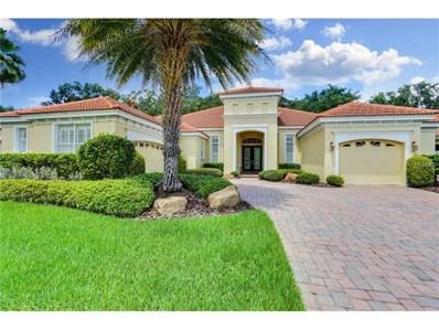20114 Oak Alley Drive, Tampa, FL 33647 - MLS#: T2899903