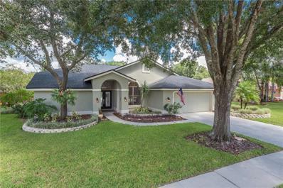 5437 Oakridge Drive, Palm Harbor, FL 34685 - MLS#: T2900564