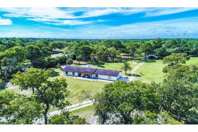 12516 Phyllis Lane, Hudson, FL 34669 - MLS#: T2901136