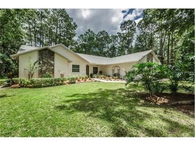 7646 Brookline Street, Wesley Chapel, FL 33544 - MLS#: T2901271