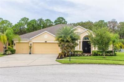9462 59TH Street N, Pinellas Park, FL 33782 - MLS#: T2901327