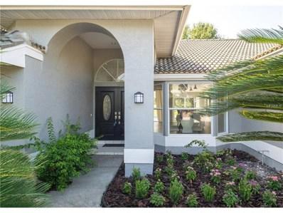 16409 Birkdale Drive, Odessa, FL 33556 - MLS#: T2902124
