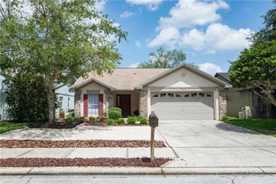 5037 Cypress Trace Drive, Tampa, FL 33624 - MLS#: T2902586