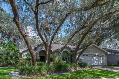5313 Windbrush Drive, Tampa, FL 33625 - MLS#: T2902697