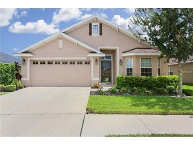 9610 Jaybird Lane, Land O Lakes, FL 34638 - MLS#: T2902708
