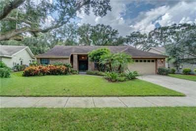 5801 Piney Lane Drive, Tampa, FL 33625 - MLS#: T2903443