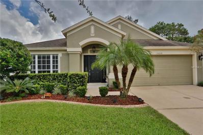 25216 Lexington Oaks Boulevard, Wesley Chapel, FL 33544 - MLS#: T2904308